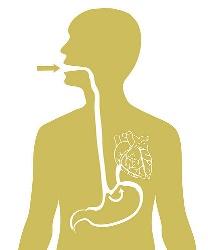 舌苔と胃に関係はある?