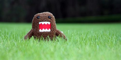 歯並びが悪いと、口臭の原因になる?