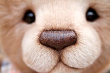 鼻から臭う鼻臭の原因は?